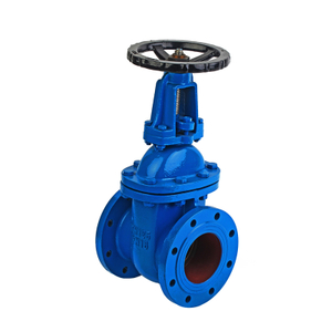 5 Cast Iron Rising Gate Valve-PN16