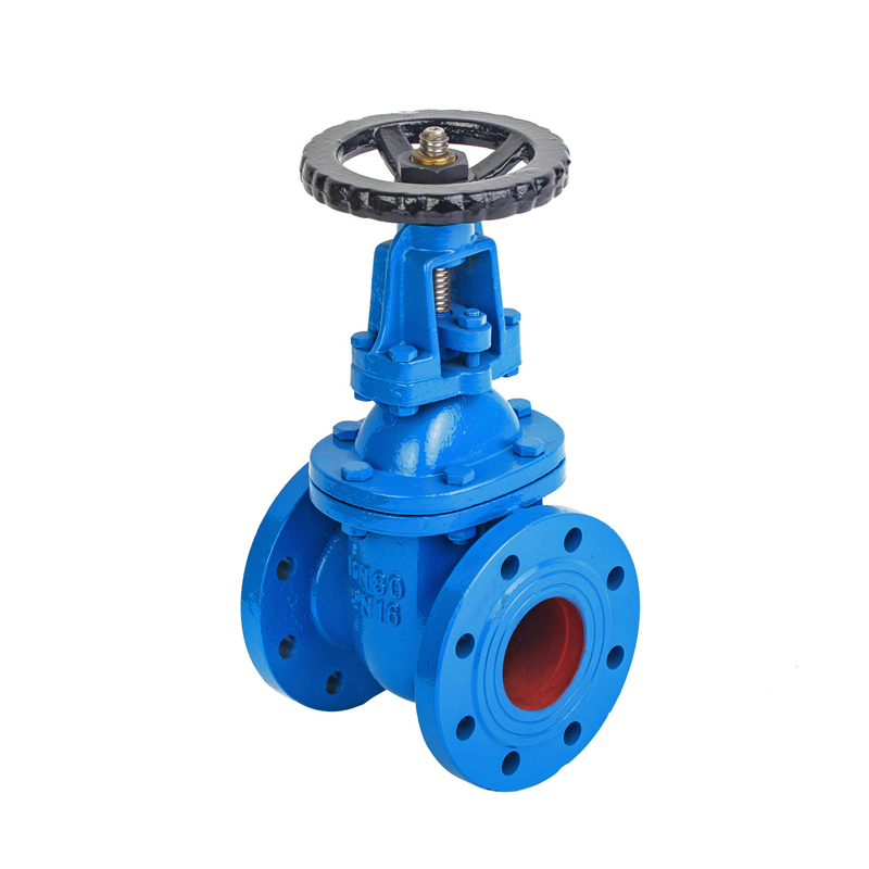 3 Cast Iron Rising Gate Valve-PN16
