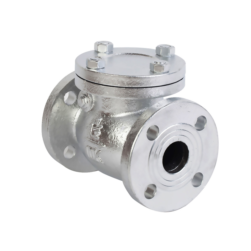 1.5 Cast Iron Swing Check Valve-JIS 10K